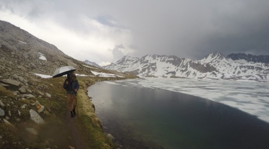 Featured Alum: Jesse Nestler and the Pacific Crest Trail